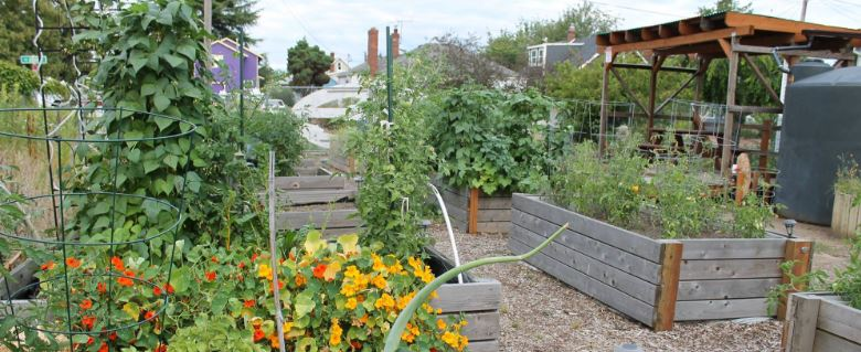 foster powell community garden