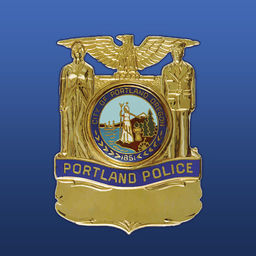 Police Strategic Plan Community Loopbacks